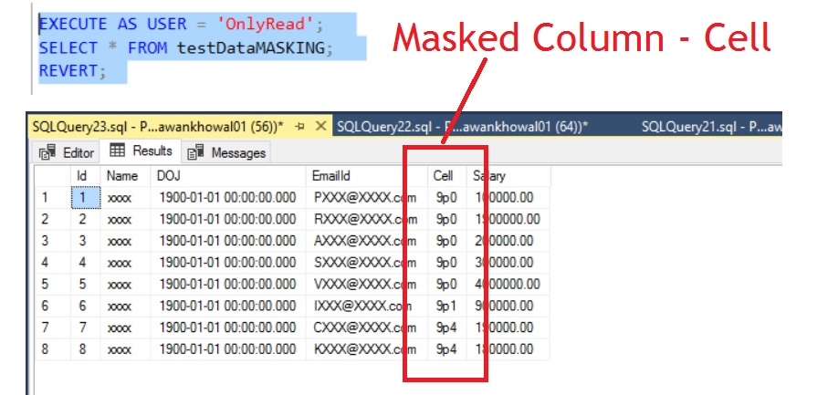 Global Masking data Market