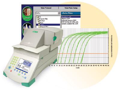 Global Mesin PCR Real Time Market