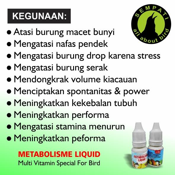 Global Obat Metabolisme Market