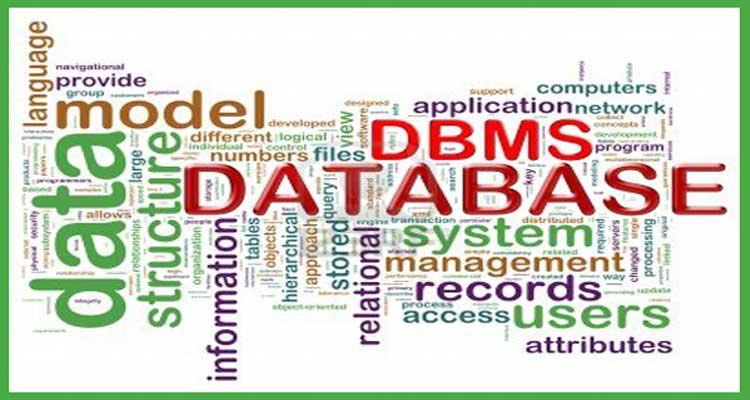 Global Perangkat Lunak Sistem Manajemen Pembelajaran Market