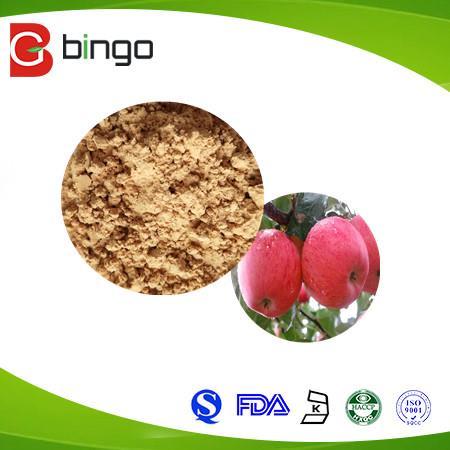 Global Polifenol Apel Market 1
