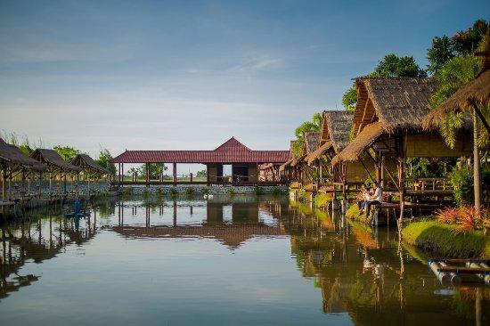 Global Taman air Market 1