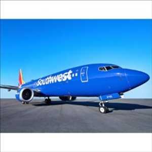 Pasar <span class = 'notranslate'> Maskapai penerbangan </span>