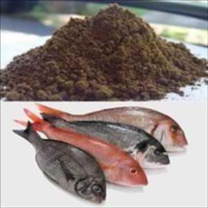 Pasar <span class = 'notranslate'> Fish Meal yang dihilangkan lemaknya </span>