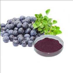 Pasar Ekstrak Acai Berry Global