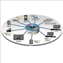 Pasar Layanan Aplikasi SAP Global