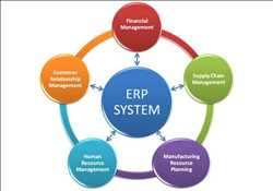 Perencanaan Sumber Daya Perusahaan (ERP) Pasar