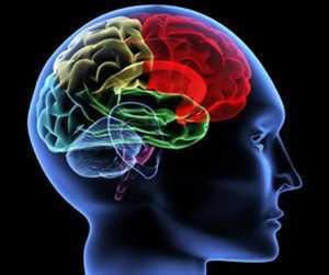 Global Neurodiagnostik Analisis SWOT Pasar