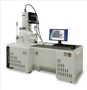 Global Pemindaian Mikroskop Elektron Ukuran pasar